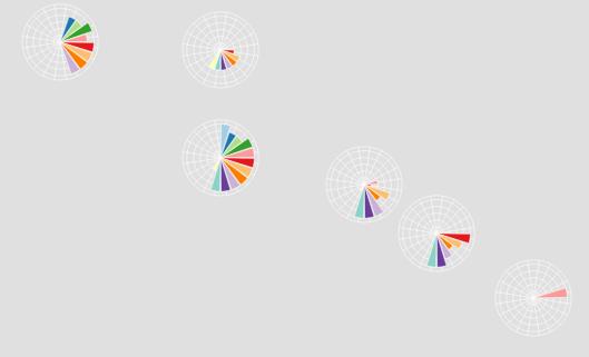 Пользовательская радиальная диаграмма, используемая в качестве условного знака