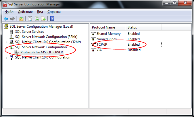 Msserver qgis linux1.png
