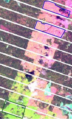 Dtclassifier-08.png