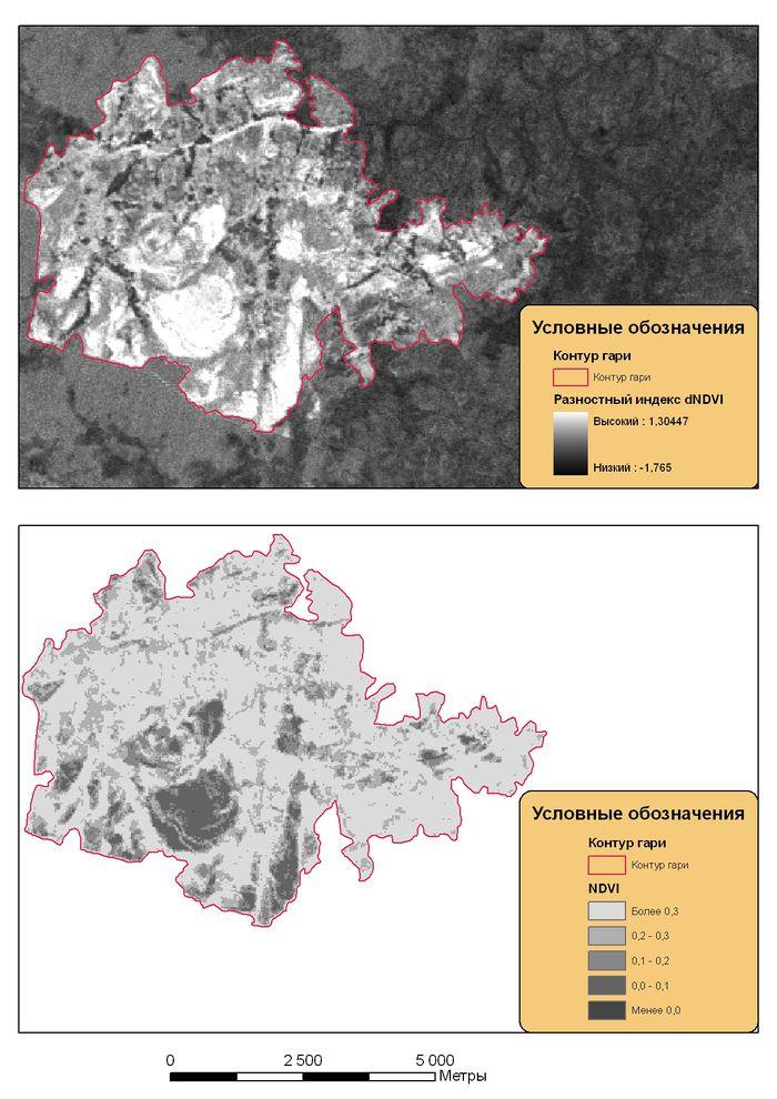 Рис. 6. Оценка степени повреждения растительности на гари от пожара № 247